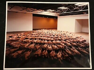 vintage Spencer Tunick photograph - 8x10 - signed Spencer Tunick M/P 2001