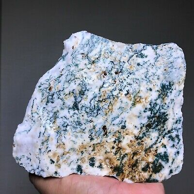 New!! Top Quality White Tree Moss Agate Rough 5 Pounds - India