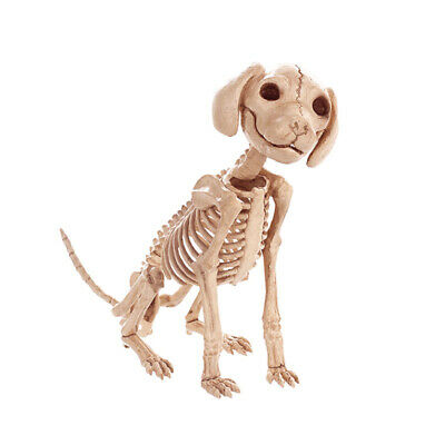 Dead Pet Zombie Puppy Sitting Skeleton Bonez Dog Bones Halloween Prop Decoration