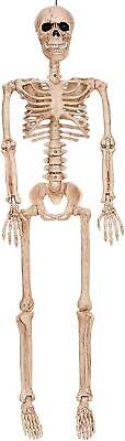 3' Life Size Jointed Skeleton Halloween Spooky Prop Haunted House Skeleton Decor