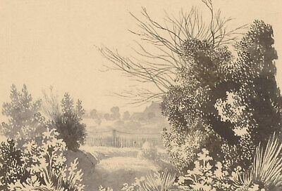 Late 19th Century Pen and Ink Drawing - Byrkley Park