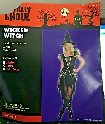 Wicked Witch Costume Black Adult Small Medium Disguise NEW