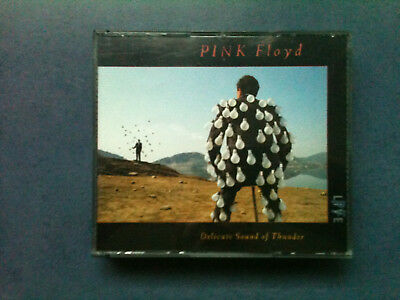 Pink Floyd - Delicate Sound of Thunder LIVE - 2 CD Big Box 1988 / TOP - ZUSTAND