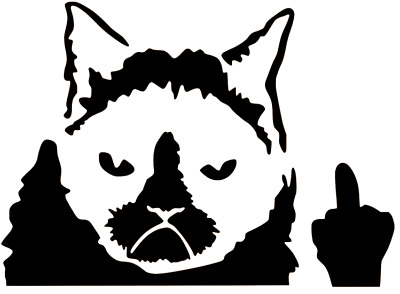 2 GRUMPY CAT Peeking Out Window Meme Funny Angry Vinyl Decal Stickers **TWO!**