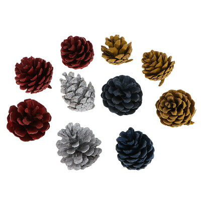 10Pcs Natural Dried Pine Cones Colored For Vase Filler Crafting Decoration