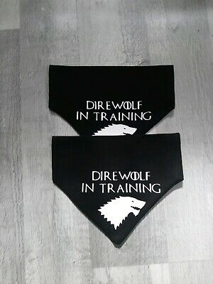 Game of thrones inspired dire wolf in traning dog bandana super cute pet fashion