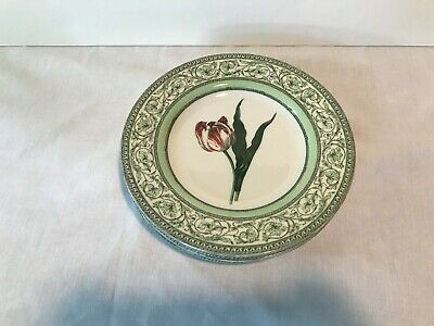 2 Speiseteller 27 cm Royal Horticultural Society Applebee Collection