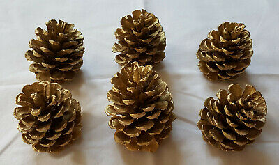 Lot of 6 Small 3-3.5 inch Gold Pinecones for decoration crafts etc