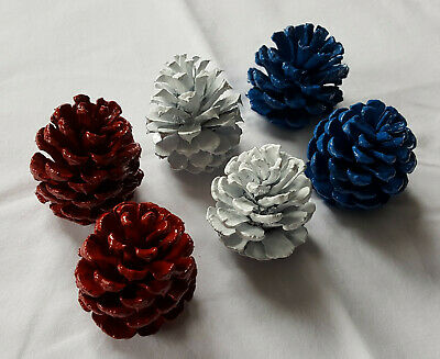 Lot of 6 Small 2.5-3 inch Patriotic Pine cones for decoration crafts etc