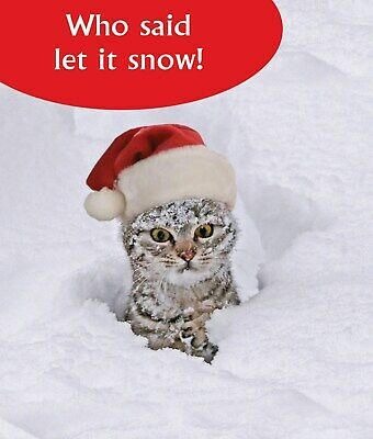 Who Said Let it Snow! Funny Cat Greeting Card Christmas Cards Humorous Greetings