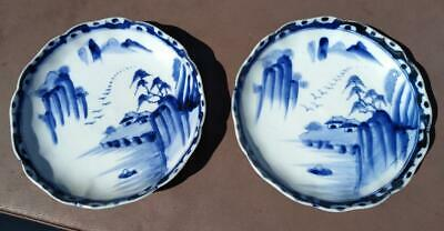 Two Old Antique Chinese Porcelain Pottery Bowl Plate Plates Canton Blue & White