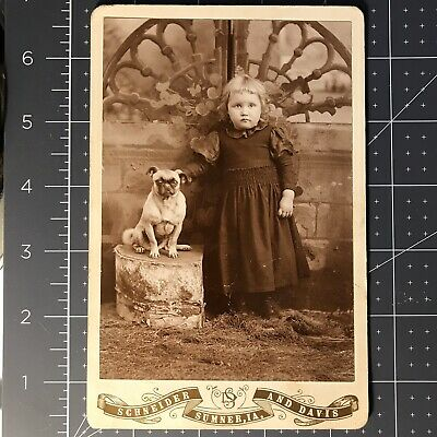 1880s Cabinet Card Photo Sweet Young Girl & Dog-Schneider & Davis Sumner IA
