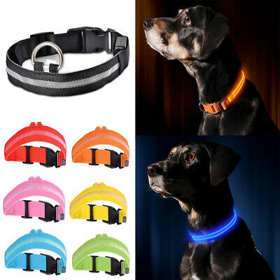 Light Up Dog Collar Rechargeable Pet Puppy Flashing Glow LED Adjustable Safety