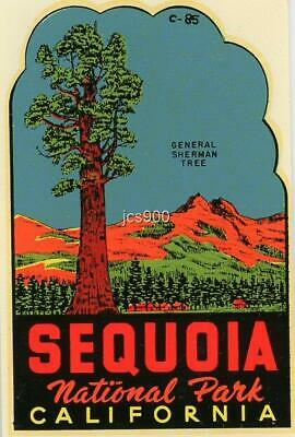 Vintage Sequoia National Park California General Sherman Tree Travel Decal Water