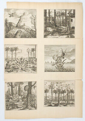 CHINA ENGRAVINGS / Collection of Six Small Engravings from Nieuhoff's 1675