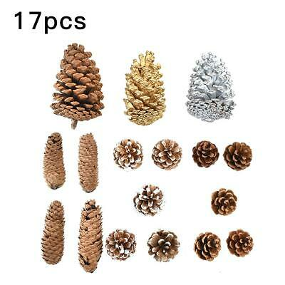 17Pcs  Natural Pine Cone Dried Pinecones DIY Home Vase Party festival Decoration