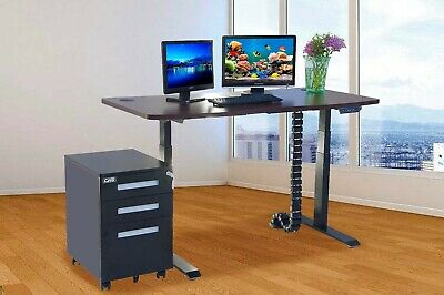 """Electric Height Adjustable Desk Frame and Table Top 71"""" Dual Motor Sit to Stand"""