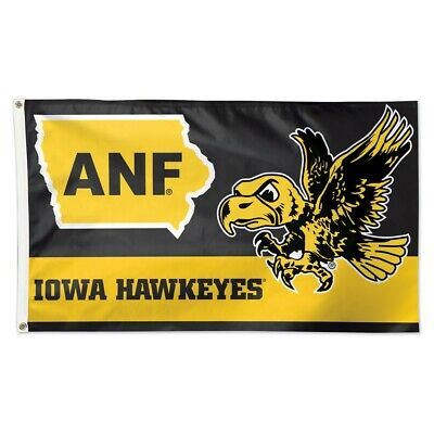 Iowa Hawkeyes Herky Mascot 12 X 30 Pennant College Flags and Banners Co