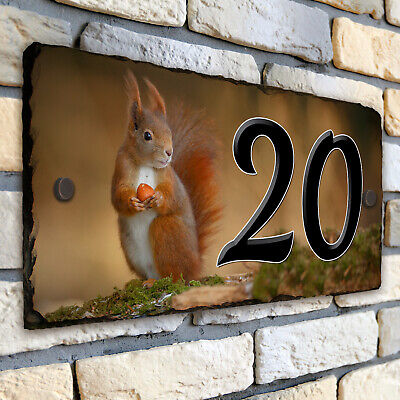 og The Red Squirrel small steel sign 200mm x 150mm