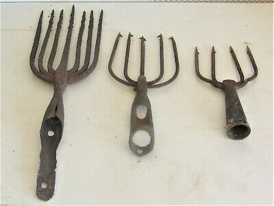 3 Vintage Iron Eel or Frog Gig Spear Hand Forged 7,5 & 4  Tine