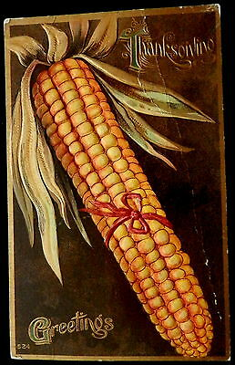 Victorian Postcard THANKSGIVING  # 524  GIANT EAR of CORN w/ RED BOW