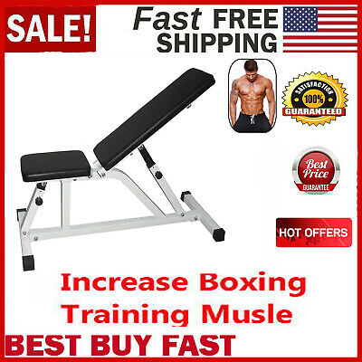 Wondrous Adjustable Fitness Weight Sit Up Bench Incline Decline Gym Alphanode Cool Chair Designs And Ideas Alphanodeonline