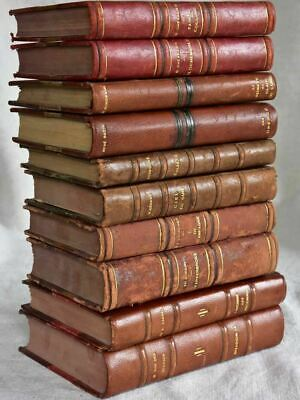 Mixed collection of ten antique French leather bound books