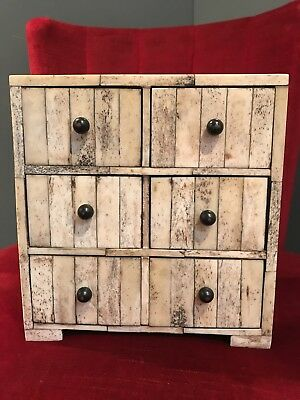 Antique Bovidae Cow Bone Collector's Specimen Cabinet Chest Drawers Jewellery