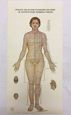 Vintage Female Acupuncture Point Posters