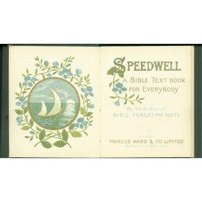 Vintage Speedwell A Bible Text Book for Everyone 1885 Gilded Cover and Pages