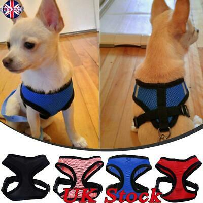 Pet Leash Rope Harness Cat Dog Chest Strap Puppy Vest Breathable Mesh Adjustable