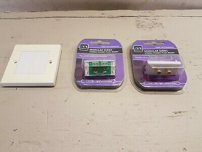 Wall plate with 2 x RCA Outlet modules