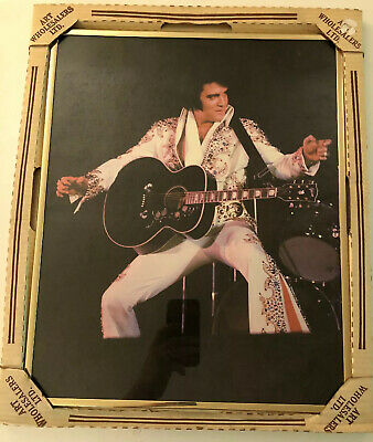 16x20 Inches The King Of Rock N' Roll Elvis Presley In Concert Framed Photo