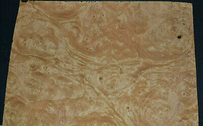 Chestnut Burl Raw Wood Veneer Sheets 10 x 15 inches 1/42nd thick       E7318-39