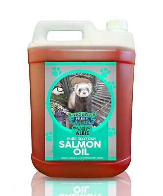 Pure Salmon Oil for Fish Dogs Cats 5 Litre Jerry FRESH PET Horse Karp Bait 5L