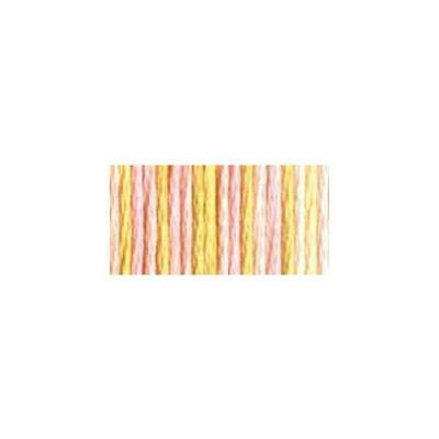 6 Pack DMC Color Variations 6-Strand Embroidery Floss 8.7yd-Fall Harvest