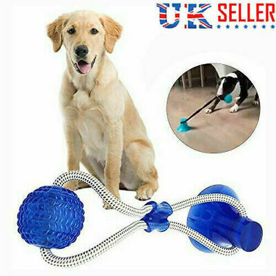 Pet Molar Bite Multifunction Floor Suction Cup Dog Toy Ball Interactive Puppy UK