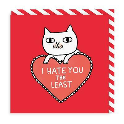 Funny Rude BIRTHDAY CARD i hate you the least #883 VALENTINES CARD
