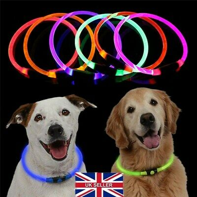 Hot USB Rechargeable Pet Dog Collar LED Flashing Light Up Safety Belt Waterproof