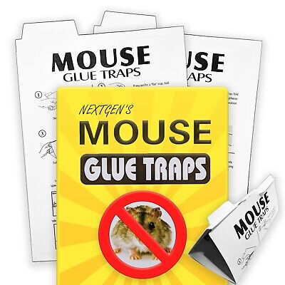 Mouse Trap Sticky Board for Rat & Mice 2 Traps Per Pack