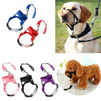 Reigns Dog Muzzle Strap Puppy Head Collar Halter Train Pet Mouth Traction Set