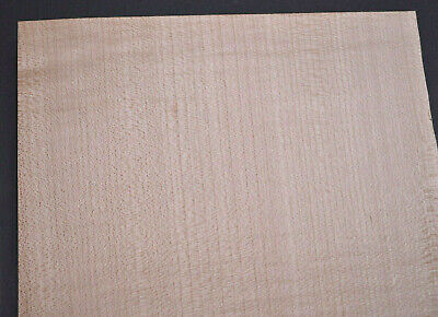 Plain Maple Raw Wood Veneer Sheets 8 x 46 inches 1/42nd                  2143-18