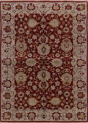 Burgundy Floral Oushak Area Rug Hand-Knotted Oriental Living Room Carpet 9'x11'