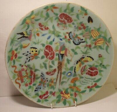 """Superb 10"""" Chinese Celadon Famille Rose 19th Century Finely Decorated Plate"""