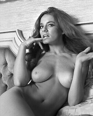 8x10 Print Sexy Model Pin Up Brunette Linda McDowell Nudes #101