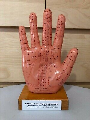 KHT Koryo Hand Acupuncture Therapy Suji Sooji Hand Model Study Meridian Points