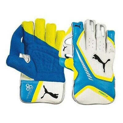 Puma Cricket EvoPower 3 Wicket Keeping Gloves Youth Size