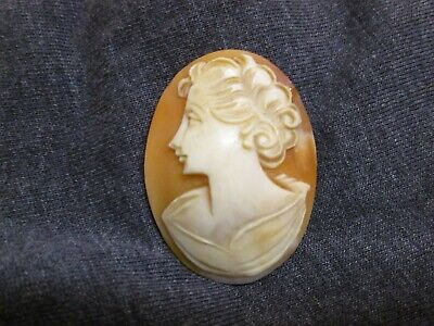 Antique Carved Shell Cameo  Circa 1900  Unmounted