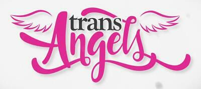 Transangel Premium | 1 Years Account INSTANT DELIVERY