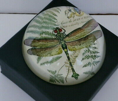 Lovely Green Botanical Dragonfly Print Round Glass Paperweight NEW in Box
